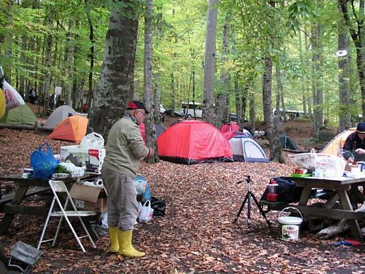 Yedigöller Kamp