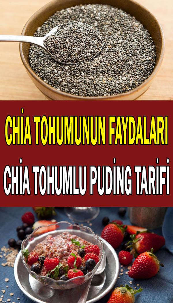 Chia tohumunun faydaları