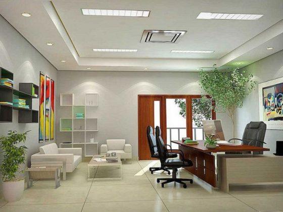 feng-shui-ofis-dekorasyonu-3