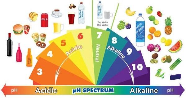 Alkali Gıdalar ve Asidik Gıdalar