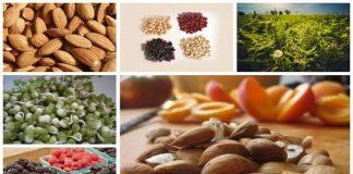 B17 Vitamini İçeren Gıdalar