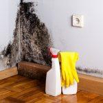 Evde Duvarlarda Küf Oluşması Nasıl Önlenir?