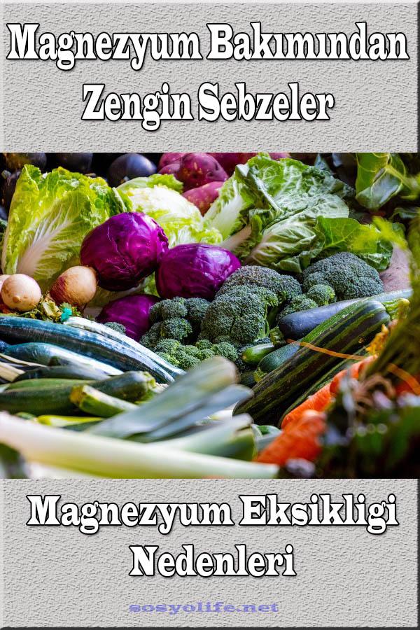 magnezyum içeren sebzeler