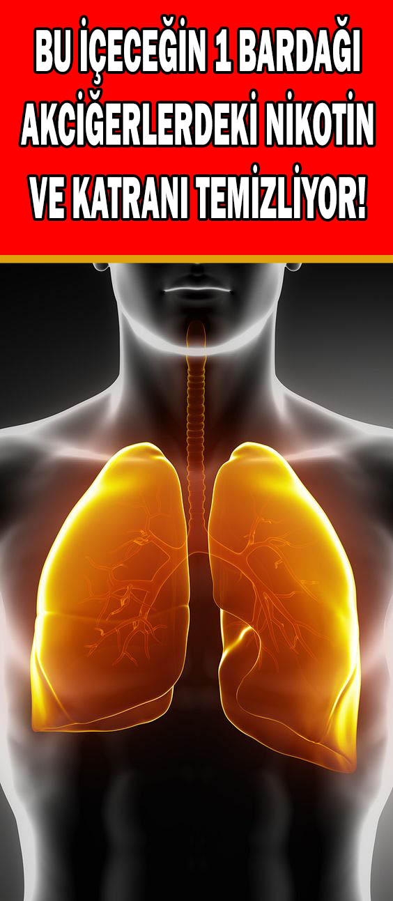 akciğer nikotin ve katran temizliği