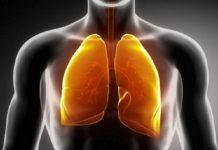 akciğerlerdeki katranı temizleyen içecek