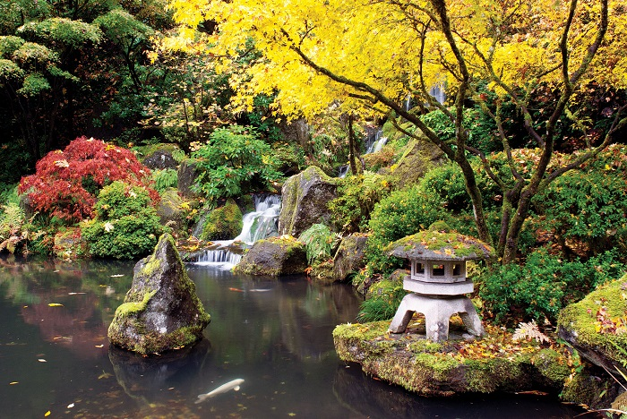 portland oregon japon bahçesi