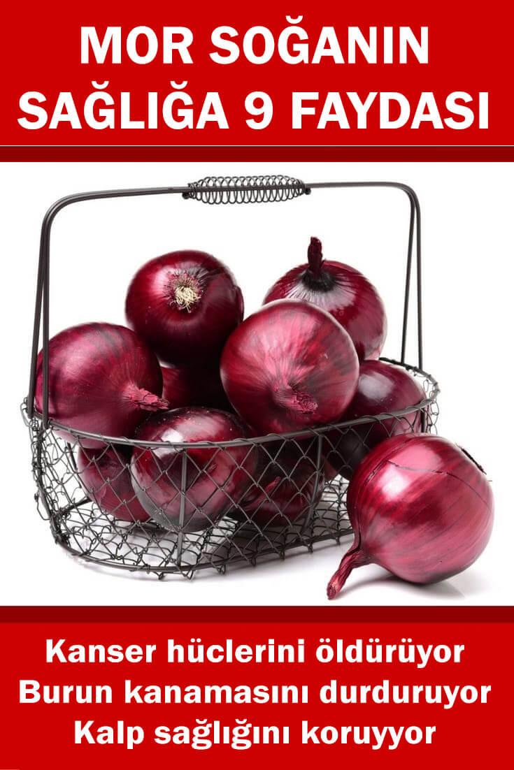 mor soğanın sağlığa faydaları