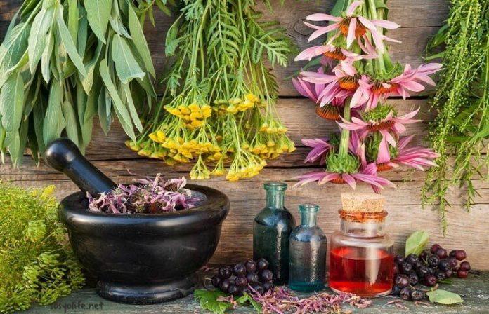 migrene iyi gelen bitkisel yağlar