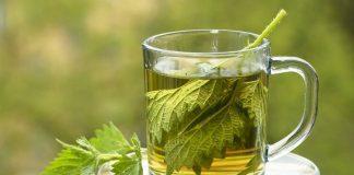 ısırgan otu çayının faydaları