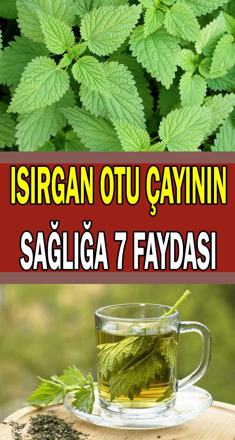 Isırgan otu çayının sağlığa faydaları