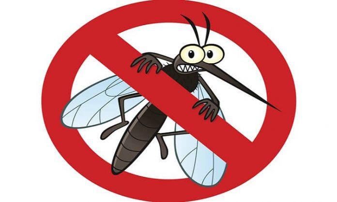 sivrisinekleri uzak tutmanın yolları