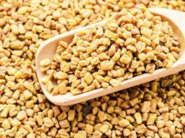 çemen otu tohumun sağlığa faydaları
