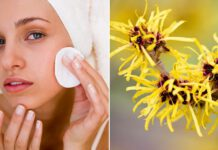 cadı fındığının cilde faydaları